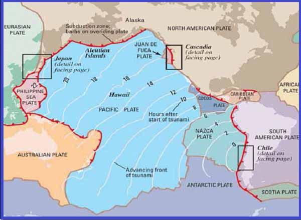 Чилийское цунами 1960 года