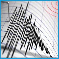 The Earthquakes